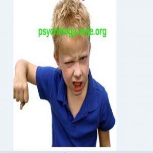 شیوه های برخورد با کودک پرخاشگر